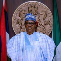 Mali: Buhari Endorses One Year Military Rule