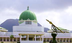 Immunity for NASS Presiding Officers Is Self-Serving by Seun Awogbenle