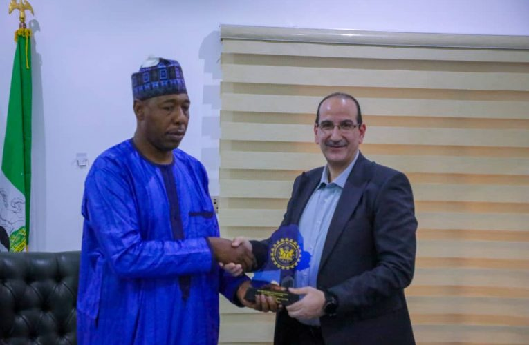 Insurgency: Western Nations Showing More Concern Than Arab Countries – Borno Gov