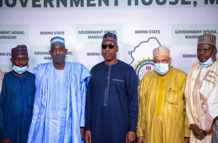 Zulum Approves Egypt's Medical Degrees for Borno's Science Students